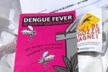Épidémie de dengue à Fidji : près d'un millier de cas