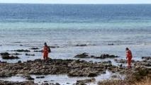 Nouvelle attaque mortelle de requin en Australie