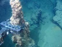 Nodules polymétalliques : le pionnier Nautilus met fin à l'accord avec le gouvernement papou