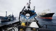 Antarctique: nouvel incident entre écologistes et baleiniers nippons