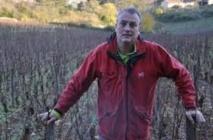 Amende requise contre un viticulteur bio qui a refusé de traiter ses vignes