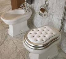 Des toilettes de la République française pour fêter la Constitution norvégienne
