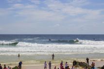 Championnats du monde de surf : un requin blanc de plus de trois mètres capturé à 300m du spot de 'Snapper Rocks'