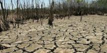 Réchauffement: le Giec alerte sur l'insécurité alimentaire et les risques de conflit
