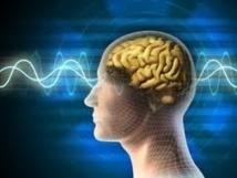 Voir son cerveau en action comme dans un miroir grâce à la réalité augmentée