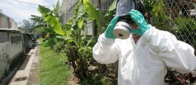 Guadeloupe : 6 décès en lien avec le chikungunya