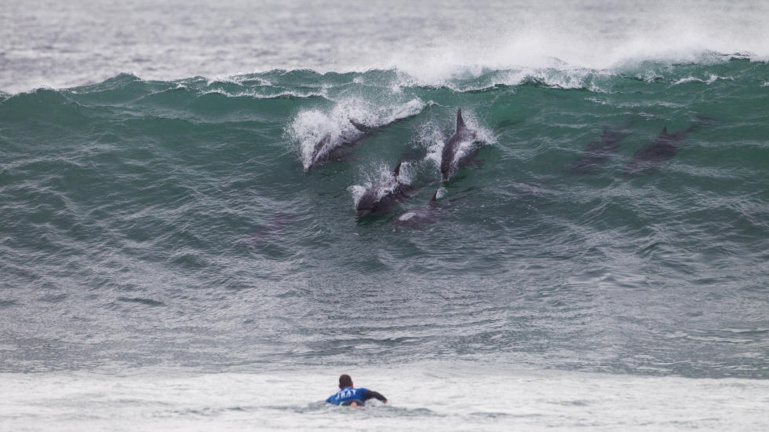 Le swell est revenu après l'élimination de Michel Bourez © ASP copie