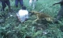 Violences policières : plusieurs États océaniens de nouveau sur la sellette