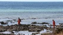 Un nageur tué par un requin non loin de Brisbane