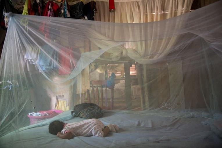 Un cas suspect de chikungunya est défini par un patient présentant une forte fièvre (> 38,5°C) ET des douleurs articulaires invalidantes, sans point d'appel infectieux. Une éruption cutanée peut être également associée. Il faut une analyse biologique pour confirmer un cas.