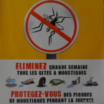 La lutte anti-vectorielle nécessite l'action de tous pour éliminer les gîtes à moustiques autour des maisons.