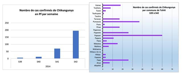 287 cas confirmés de chikungunya