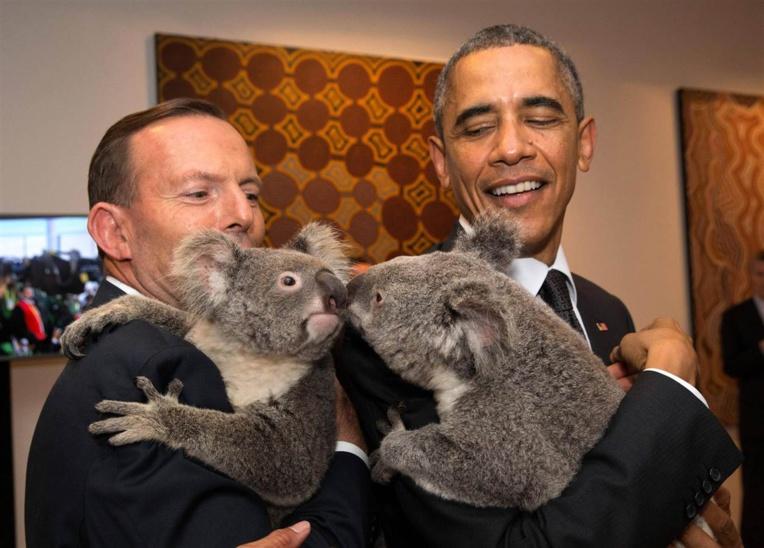 """Au G20, l'Australie invente """"la diplomatie du koala"""""""