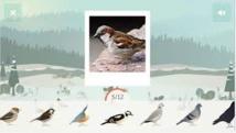 Une application pour contribuer à mieux connaître les oiseaux