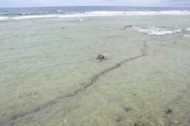 Une des failles repérées à Moruroa, dans la zone Camélia : il s'y produit un glissement de terrain très lent mais important en volume, selon l'analyse faite de la situation par l'association Moruroa e tatou.