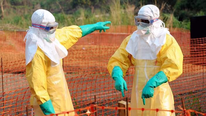 Ebola : 7.842 décès et 20.081 cas dans les trois pays les plus touchés (OMS)