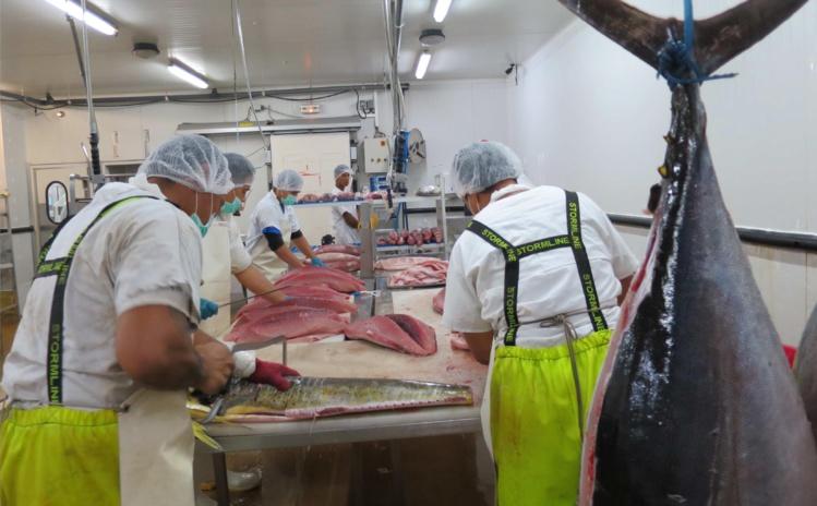 La Polynésie comptait 502 bateaux de pêche en 2013