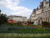 Paris: bientôt des poules dans le jardin de l'Hôtel de Ville