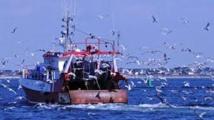 Pêche: l'UE fera le point tous les ans sur l'interdiction des rejets en mer