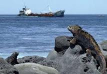 Equateur : nouvelles menaces de pollution aux Galapagos