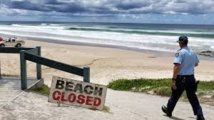 Un Japonais tué par un requin en Australie, les jambes arrachées
