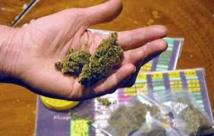 Il jette par la fenêtre du cannabis qui tombe entre les mains de policiers