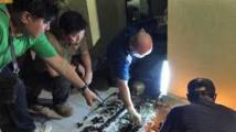Un Australien soupçonné de meurtre et d'abus sexuels sur mineures aux Philippines