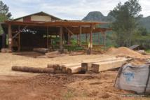 La scierie de Tubuai a l'intention de développer encore les débouchés commerciaux de la filière bois.