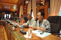 Lucie Tiffenat, secrétaire générale du syndicat Otahi était co-rapporteur du projet d'avis (Crédit photo : CESC)