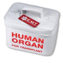Amendement sur les dons d'organes: les associations de greffés divisées