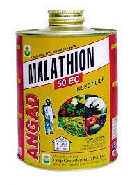 Malathion: La Nouvelle-Calédonie va saisir l'OMS sur l'usage de l'insecticide
