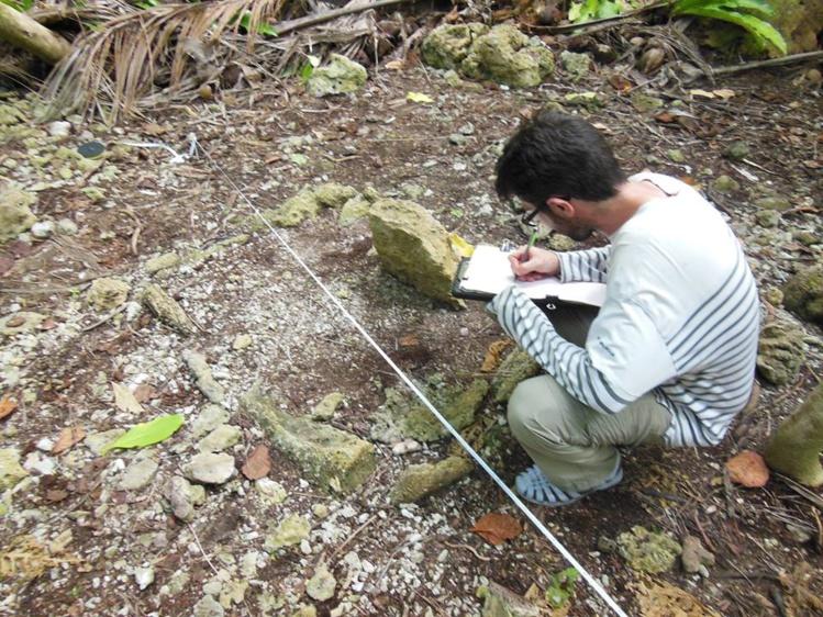 Le Dr Guillaume Molle cartographie une ciste sur un marae Horoatera. Aymeric Hermann,  archéologue à l'UPF, Moanatea Claret, un étudiant en Master de l'UPF travaillent également à ses côtés. Mark Eddowes, archéologue et consultant-expert pour Tetiaroa Society, apporte également sa collaboration.
