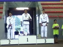 Judo « Oceania NC 2015″ : Douze médailles pour Tahiti