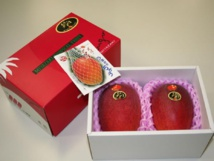 Deux mangues adjugées plus de 2.000 euros au Japon