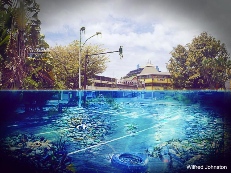 Environnement: le photomontage d'un étudiant polynésien