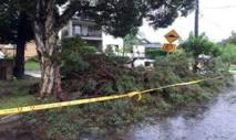 Australie: intempéries à Sydney, trois morts