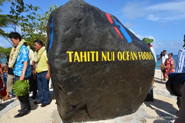 La première pierre monumentale de Tahiti Nui Ocean Foods, un bloc de 15 tonnes transporté spécialement par bateau de la Punaruu jusque sur l'atoll de Hao. Elle porte désormais le logo de la société. C'est le premier symbole visible à Hao de ce projet pour lequel les discussions ont démarré il y a trois ans.