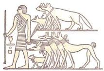 La domestication du chien remonterait à plus de 27.000 ans