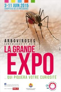 Tout savoir sur les moustiques et les maladies qu'ils véhiculent