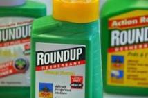 La CLCV salue l'interdiction de la vente du Roundup dans les jardineries