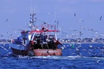 """Pêche: la situation """"plutôt favorable"""" pour le secteur en France"""