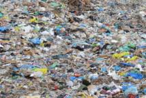 Des déchets de catégorie 2 au centre d'enfouissement technique de Hitia'a