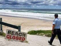 Un homme entre la vie et la mort après une attaque de requin en Australie