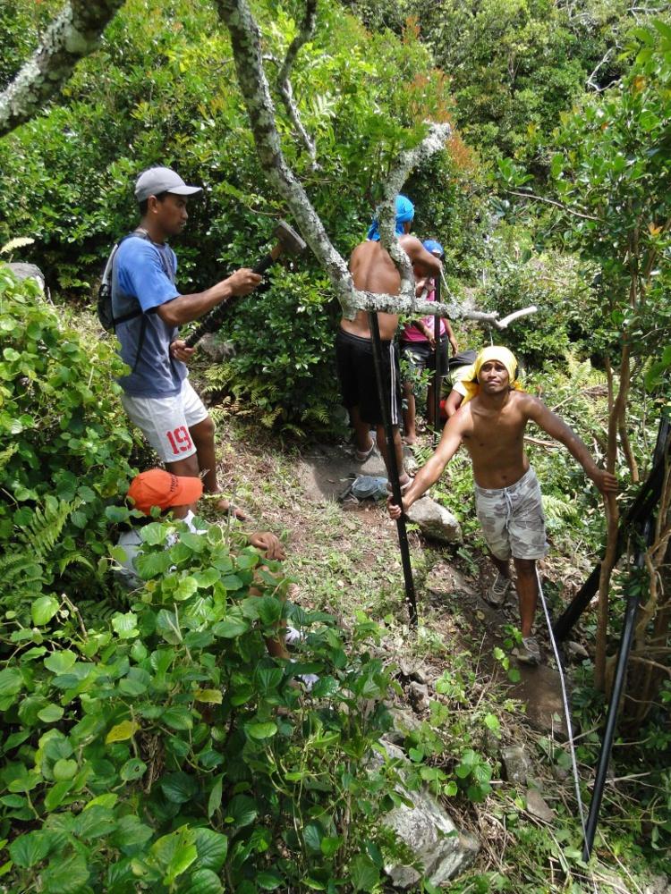 Rapa, point chaud de la biodiversité à protéger