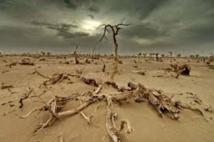 """Paris accueille mardi un """"Sommet des consciences pour le climat"""""""