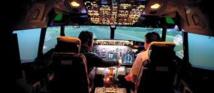 Armé d'une hache, un pilote suédois délivre un passager ivre des toilettes