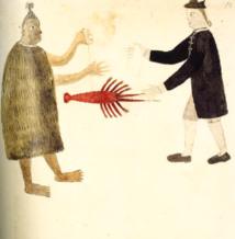 Une des illustrations que l'on retrouve dans le livre. Cette aquarelle aurait été dessinée et peinte de la main de Tupaia.