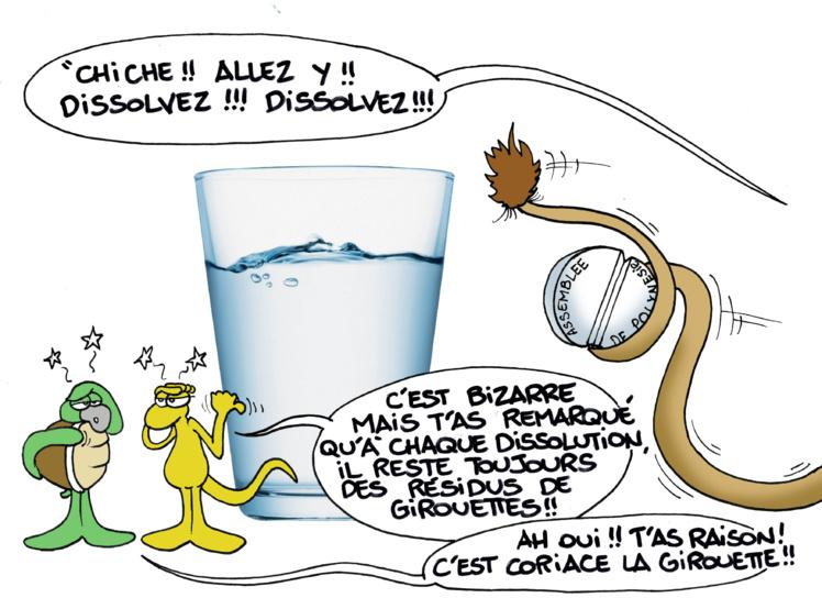 """""""Dissolution et girouettes"""" par Munoz"""