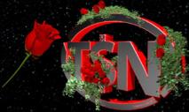 La société Training $andra Network en cessation de paiement
