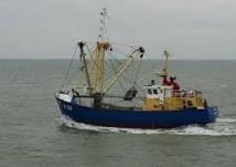 """Un BTS pour faire des pêcheurs de demain des """"sentinelles de la mer"""""""